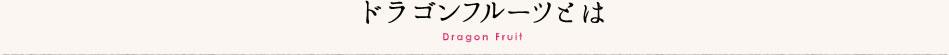 ドラゴンフルーツとは